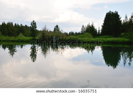 Trees and a grassy slope are reflected in a still pond under a stormy sky.