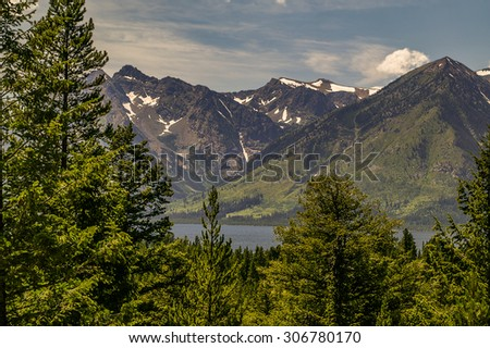 Trees and a lake in Grand Teton National Park in the summer - stock photo