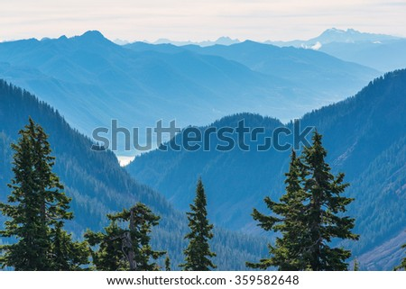 trees and blue mountain,some scenic view of mt Shuksan in Artist point area on the day,summer,Washington,USA. - stock photo