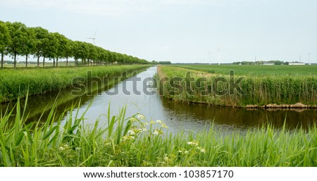 Trees and canal in perspective