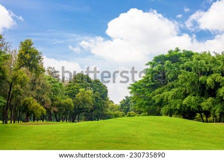 Trees and grass field with blue sky - stock photo