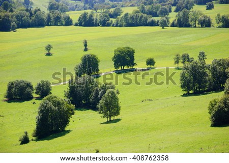 Trees and road crossing the alpine pasture. Annecy lake area (Haute-Savoie, France). Aerial view from above. - stock photo