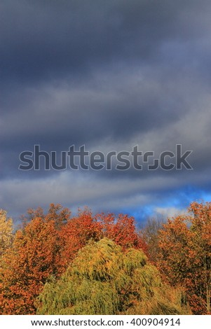 Trees and Storm Clouds Background - Heavy dark storm clouds over a forest with the colors of autumn. - stock photo