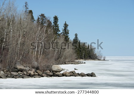Trees at the lakeside, Lake Winnipeg, Hecla Grindstone Provincial Park, Manitoba, Canada - stock photo