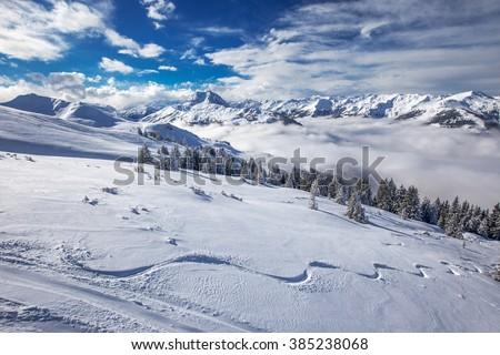 Trees covered by fresh snow in Austria Alps from Kitzbuehel ski resort - one of the best ski resort in the workd with 54 cable cars, 170 km prepared skiing slopes and place of famous hahnenkamm races.