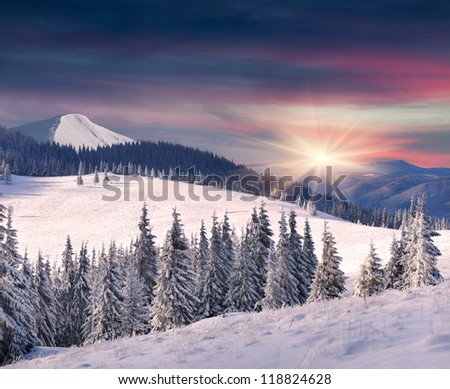 Trees covered with hoarfrost and snow in mountains. Sunrise - stock photo