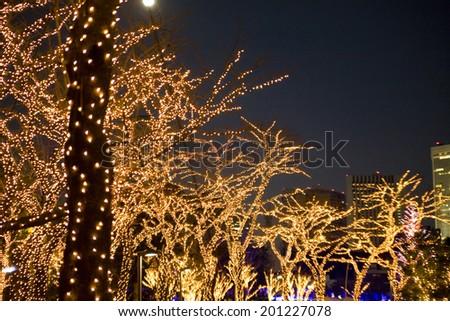 Trees decorated by illumination - stock photo