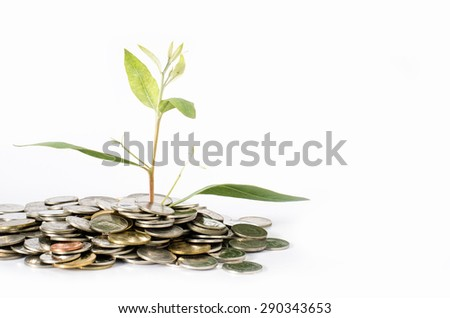 Trees grow from USD concept of business growth as the growth of trees.