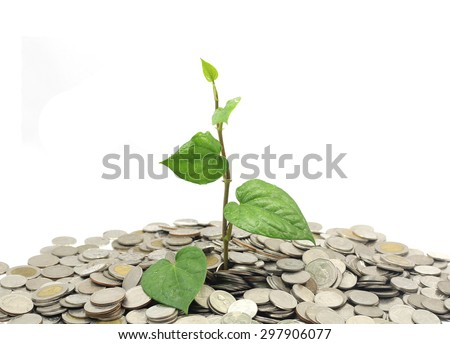 Trees grow out of cash on isolated background.