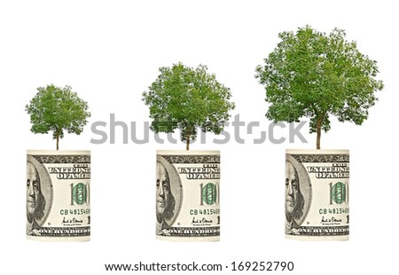 trees growing from dollar bill - stock photo