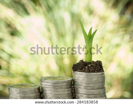 Trees growing on a pile of money Reflects business growth