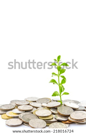 trees growing on coins , Money