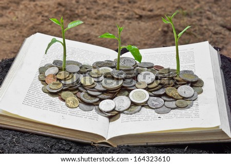 """Trees growing on coins over the book / A big open book with coins and tree. """"Reading makes you richer"""" concept.  - stock photo"""