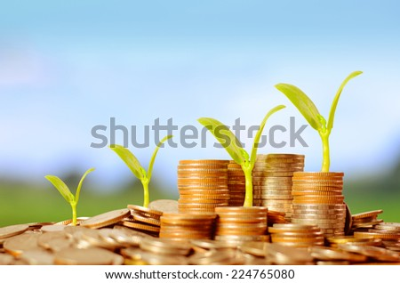 Trees growing on pile of coins money over green and blue sky background - stock photo