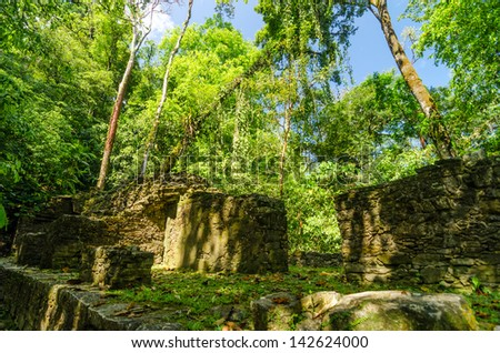 Trees growing out of ruins in the jungle near Palenque - stock photo