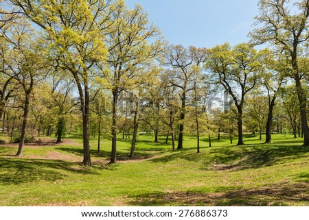 Trees in blossom in spring, Tilles Park, St. Louis, Missouri