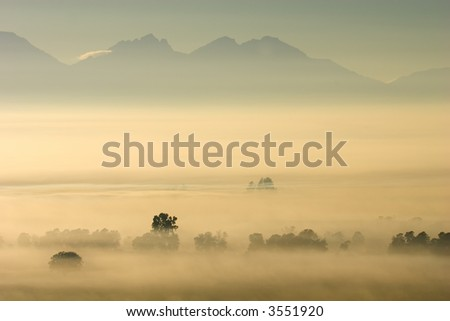 Trees in mist against a backdrop of mountains, early morning