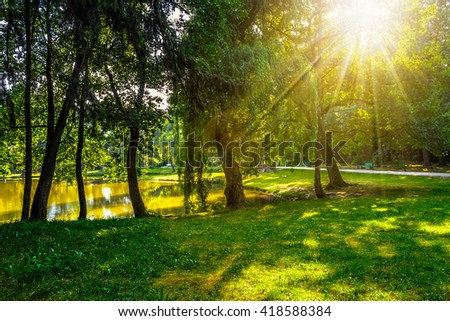 trees in the evening sun near a pond in city park - stock photo