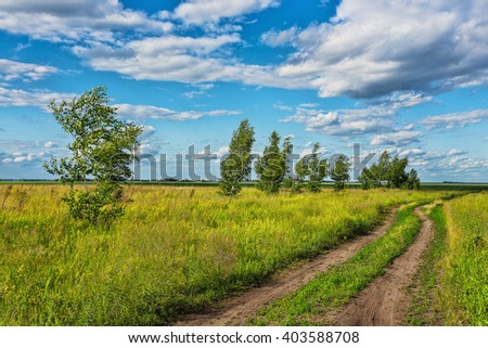 trees in the middle of the green field on a background of blue sky with clouds - stock photo