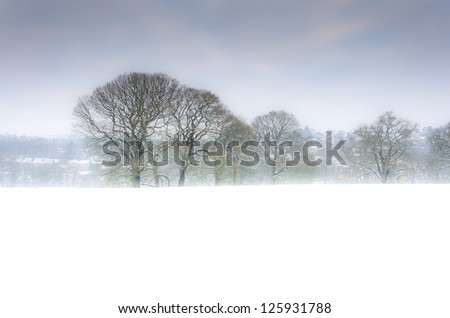 Trees in the snow, village in the background - stock photo
