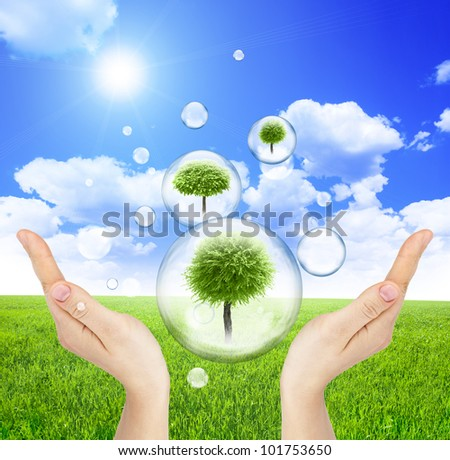 Trees inside soap bubbles in hands on green field and blue sky background - stock photo