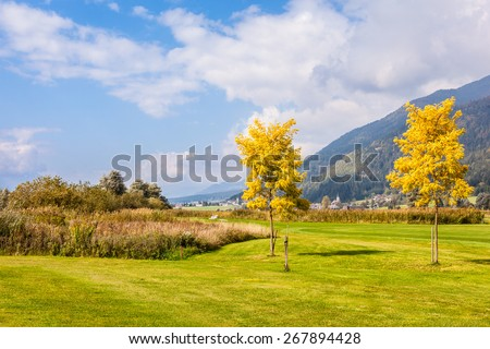 trees on a beautiful meadow or golf course on a sunny day - stock photo