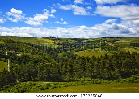 Trees on a hill, Vallata, Avellino, Campania, Italy