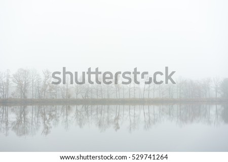 Trees on the bank of lake. Autumn fog mood.