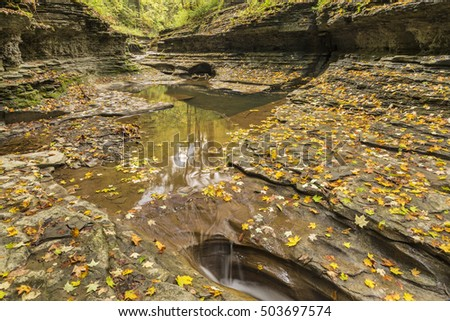 Trees reflected in pools lined with a coating of leaves in Buttermilk Gorge in Buttermilk Falls State Park, Ithaca, New York
