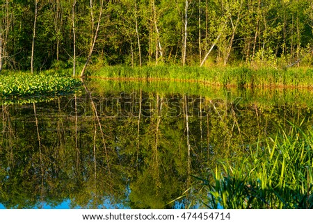 Trees reflected in the pond at Beaver Marsh in Cuyahoga Valley National Park
