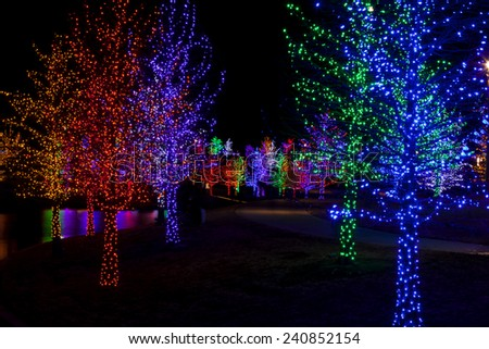 Trees tightly wrapped in LED lights for the Christmas holidays reflecting in lake. Each tree is wrapped in one color. - stock photo
