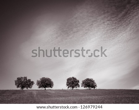 trees with blue sky and clouds 34, sepia