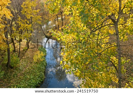 Trees with yellow leaves and the blue river. - stock photo