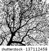 Treetops in black and white tone - stock photo