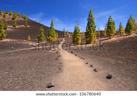 Trekking path in volcanic landscape of Teide National Park, Tenerife, Canary islands, Spain - stock photo