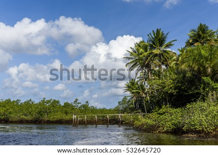 Tremembe Waterfall in Camamu Bay, Peninsula de Marau, South Bahia, Brazil