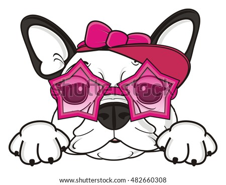 trendy girl of french bulldog in pink sunglasses and cap