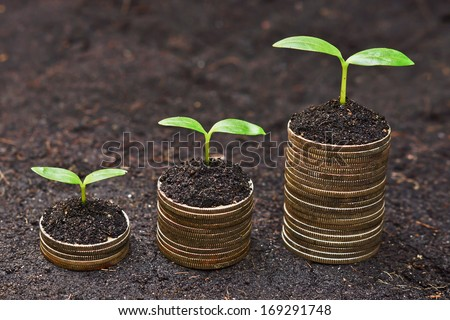 tress growing on coins / csr / sustainable development / economic growth /  trees growing on stack of coins