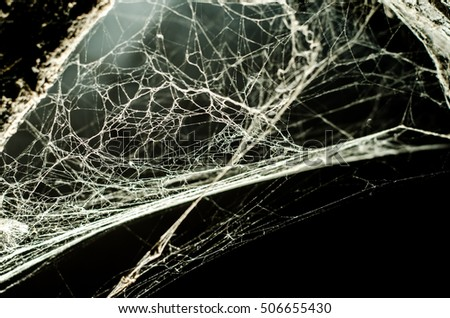 Triangle horror cobweb or spider web isolated on black background,horizontal photo