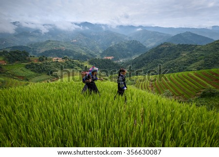 Tribal costume in rice fields on terraced in Mu Cang Chai, YenBai, Vietnam.