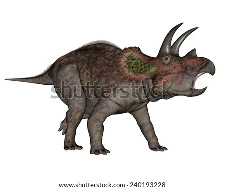 Triceratops dinosaur walking in white background- 3D render - stock photo