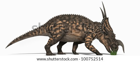 Triceratops eating - stock photo