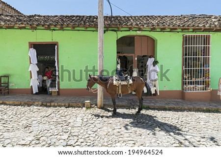 TRINIDAD, CUBA - MAY 8, 2014: A horse on streets of small colonial town Trinidad, where people still use horses and oxen for transportation and field work.