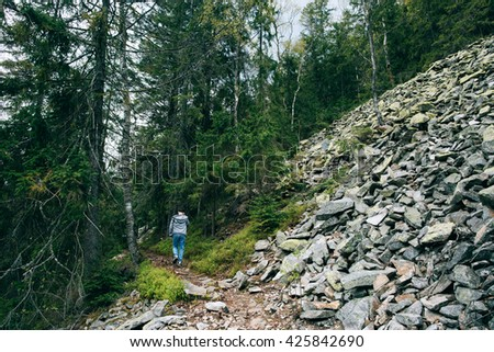 trip in the mountains. People silhouette hiker walking in the Misty mountain forest. Green pine forest landscape. Mountain trek - stock photo