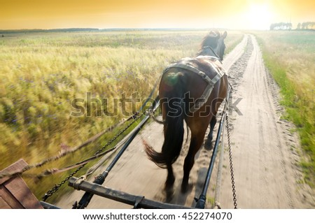 Trip on a cart with a horse on rural road - stock photo