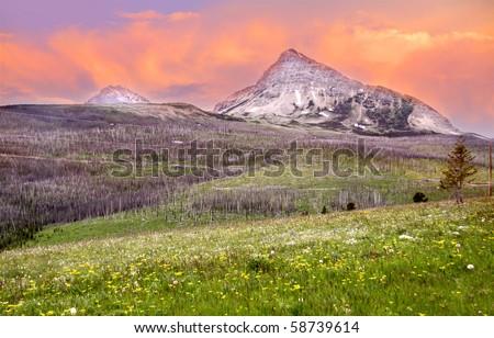 Triple divide peak in Glacier national park Montana - stock photo