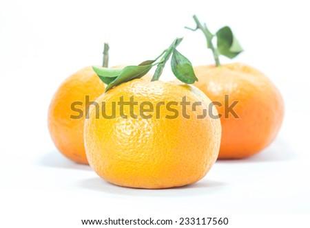 Triple fresh mandarin oranges as isolated fruits on white background - stock photo