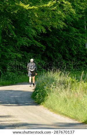 TROMTO, SWEDEN - JUNE 11, 2015: Senior man walking on forest road one sunny day. Forest to the left and grassland to the right.