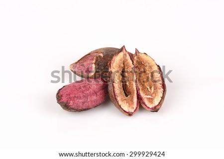 -tropical-almond-bengal-almond-indian-almond-sea-almond-beach-almond ...