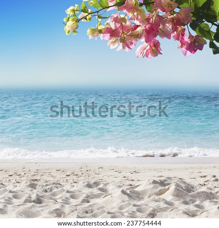 Tropical background with white sand beach, blue sea, blooming flowers and perfect sky - stock photo